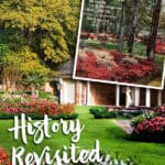 Azalea Garden on Cover of Southern Living