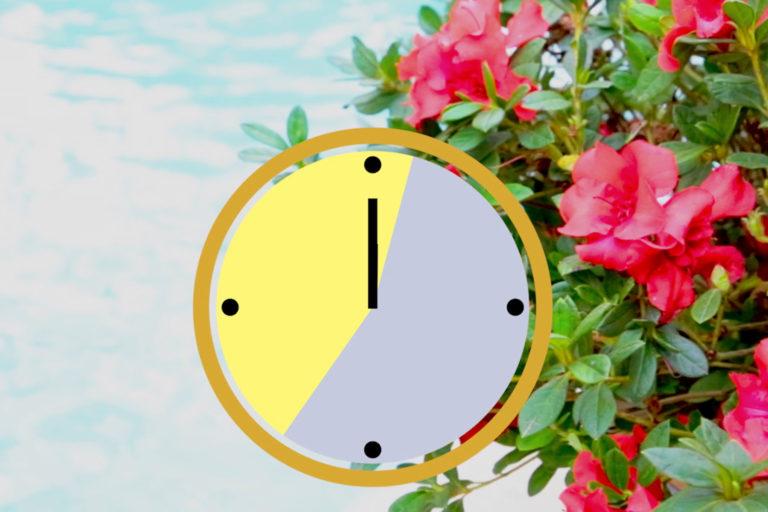 Clock Showing Sun Exposure Hours with Encore Azaleas